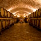 Vinoteka-podrum